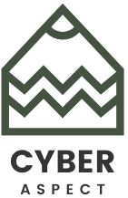 Cyber Aspect | What's New in the Cyber Space World?